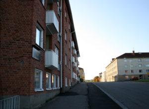 Bild från Rosen/Lagern
